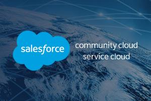 Telink Experience Cloud - Service Cloud Case Study